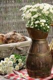 Mazzo dei fiori bianchi delle mummie Fotografia Stock