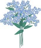 Mazzo dei fiori blu Immagine Stock Libera da Diritti