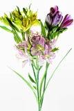 Mazzo dei fiori colorati di alstroemeria isolati su fondo bianco Immagine Stock