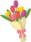 Mazzo dei fiori dei tulipani Immagine Stock Libera da Diritti