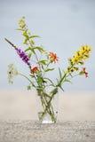 Mazzo dei fiori del campo Fotografia Stock Libera da Diritti