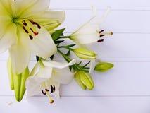 Mazzo dei fiori del giglio colorati bianco crema Immagini Stock