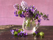Mazzo dei fiori della sorgente Immagini Stock
