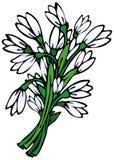 Mazzo dei fiori della sorgente Fotografia Stock