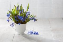 Mazzo dei fiori di legno della scilla marina Fotografia Stock Libera da Diritti