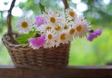 Mazzo dei fiori e dei fiordalisi delle margherite nel canestro nel giardino su fondo di legno Immagini Stock Libere da Diritti