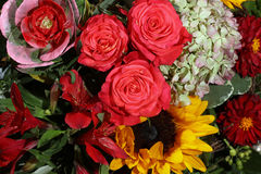 Mazzo dei fiori freschi di estate Fotografie Stock Libere da Diritti