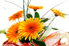 Mazzo dei fiori gialli Fotografia Stock Libera da Diritti