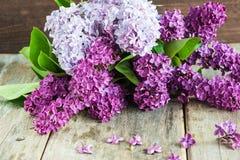 Mazzo dei fiori lilla fotografia stock