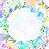 Mazzo dei fiori, salice, papavero, camomilla, fiori dell'acquerello della mela, royalty illustrazione gratis