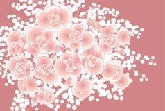 Mazzo dei fiori sboccianti Fotografie Stock