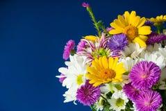 Mazzo dei fiori sui precedenti blu Foto del primo piano fotografie stock