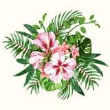 Mazzo dei fiori tropicali Fotografia Stock