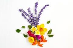 Mazzo dei fiori variopinti su fondo bianco Fotografie Stock