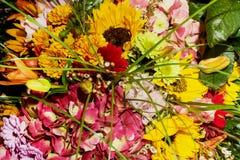 Mazzo dei girasoli, del alstromeria, della gerbera, del crisantemo e della l Fotografia Stock