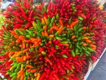 Mazzo dei peperoni ornamentali immagini stock libere da diritti