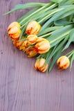 Mazzo dei tulipani arancio Fotografia Stock