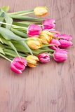 Mazzo dei tulipani colorati misti Fotografie Stock