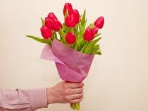 Mazzo dei tulipani dentellare Immagini Stock Libere da Diritti
