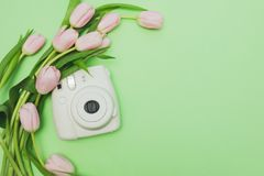 Mazzo dei tulipani e della macchina fotografica rosa delicati su fondo verde chiaro Fotografia Stock Libera da Diritti