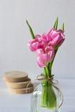 Mazzo dei tulipani rosa freschi Fotografia Stock Libera da Diritti