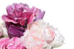 Mazzo dei tulipani rosa isolati su fondo bianco Fotografia Stock