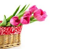 Mazzo dei tulipani rosa nel canestro Immagini Stock Libere da Diritti