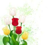 Mazzo dei tulipani stilizzati Immagine Stock