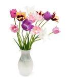 Mazzo dei tulipani su una priorità bassa bianca Immagine Stock