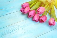 Mazzo dei tulipani sulla tavola di legno blu Giorno felice del ` s delle donne 8 marzo , Giorno del ` s della madre Spazio piano  Fotografie Stock Libere da Diritti