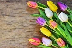 Mazzo dei tulipani variopinti Immagini Stock Libere da Diritti