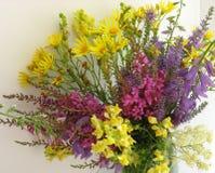 Mazzo dei wildflowers immagini stock libere da diritti