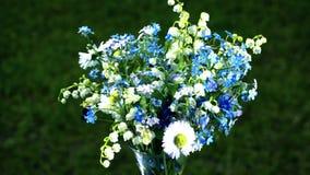 Mazzo dei Wildflowers stock footage