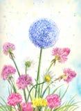Mazzo dei wildflowers con l'acquerello illustrazione vettoriale