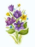 Mazzo dei wildflowers dell'acquerello della molla royalty illustrazione gratis