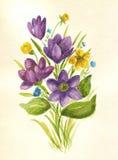 Mazzo dei wildflowers dell'acquerello della molla illustrazione vettoriale