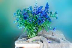 Mazzo dei wildflowers isolati su un fondo blu immagine stock libera da diritti