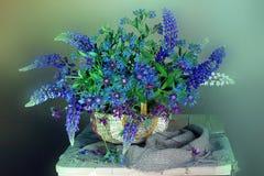 Mazzo dei wildflowers isolati su un fondo leggero immagini stock