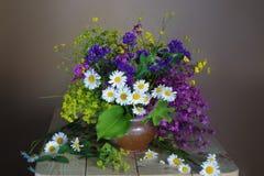 Mazzo dei wildflowers isolati su un fondo leggero fotografia stock libera da diritti