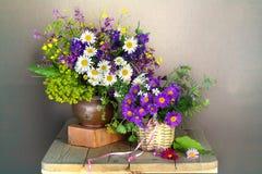 Mazzo dei wildflowers isolati su un fondo leggero fotografie stock