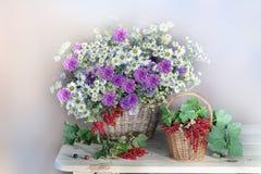 Mazzo dei wildflowers isolati su un fondo leggero fotografia stock