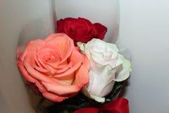 Mazzo del 'variopinto раРdi Ð±ÑƒÐºÐµÑ delle rose·‹Ñ DEL ½ Ñ DEL 'Ð DEL ² Ð?Ñ DEL † Ð DEL ¾ Ñ DEL ½ Ð DI Ð… ¾ Ð DI рз fotografie stock libere da diritti