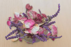 Mazzo del bouquet della lavanda Fotografia Stock