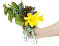 Mazzo del Daffodil Immagine Stock