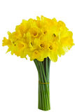 Mazzo del Daffodil Fotografie Stock Libere da Diritti