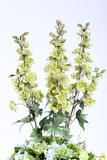 Mazzo del fiore artificiale variopinto, fondo bianco fotografia stock