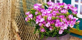 Mazzo del fiore del fondo rosa di alstroemeria Fotografia Stock