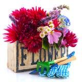 Mazzo del fiore del giardino fotografia stock
