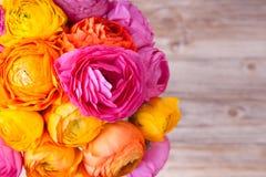 Mazzo del fiore del ranunculus Immagini Stock Libere da Diritti