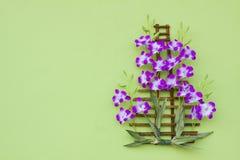 Mazzo del fiore dell'orchidea decorato sulla parete verde con spazio libero AR Immagini Stock Libere da Diritti